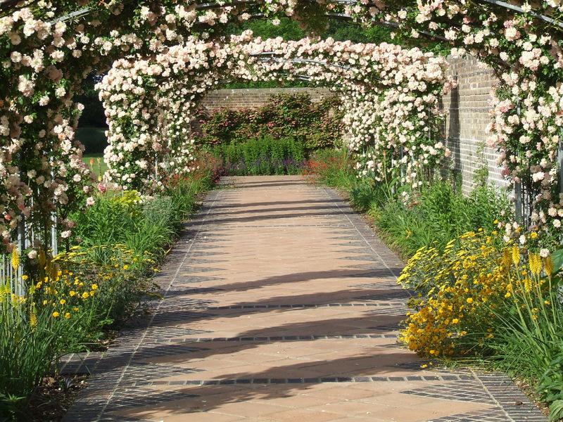 A rose walk garden design in Brenchley near Tonbridge