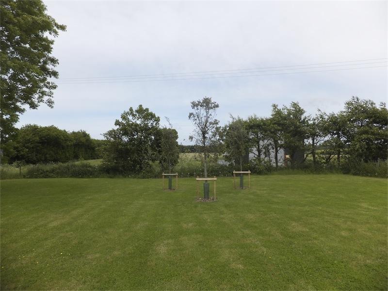 Parkland, Playfoot Garden Design, Nackington, Canterbury, Kent